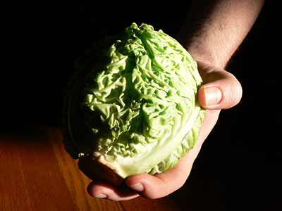 Ickle cabbage
