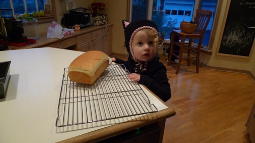 Black cat-bread-sm